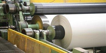 Emami Paper Mills Ltd